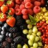 Хранене по време на бременността – част 1: Необходими витамини