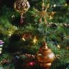 Коледната елха: от класика до елегантност