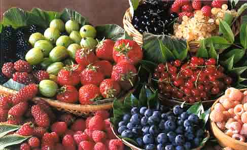 fruit2 - Плодова диета