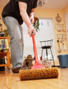 27 229x300 - Как да приучим мъжа си да помага у дома