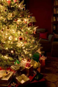 14 200x300 - Коледно-новогодишна украса на дома