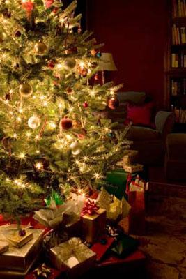 14 - Коледно-новогодишна украса на дома