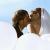 10 съвета в стил фън шуй, за да направите медения си месец незабравим