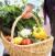 Как да отслабнете през пролетта, без да увредите здравето си