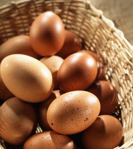 egg - Бразилска диета