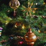 elha 150x150 - Коледната елха: от класика до елегантност