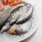 riba 150x150 - За ползите от морската риба