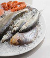 За ползите от морската риба