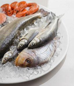 riba - За ползите от морската риба