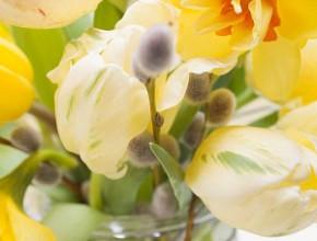cv1 290x220 - Великден – време и за... цветя - I част