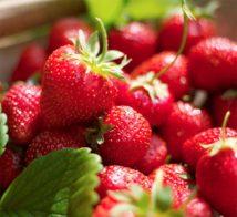 За ягодите...
