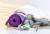 """""""Плажно"""" тяло през зимата: 7 ефективни упражнения"""