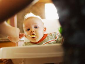 01lh 290x220 - Рецепти за приготвяне на бебешка храна