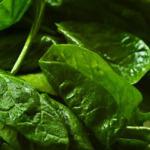 spinach 150x150 - 8 пролетни рецепти за основни ястия