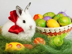 Easter Awesome 290x220 - 5 свежи идеи за Великденско настроение
