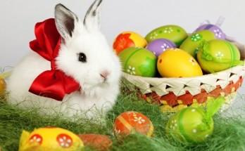 Easter Awesome 348x215 - 5 свежи идеи за Великденско настроение